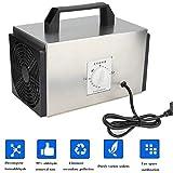 Generador de Ozono, 10g Purificador de Aire Auto Casero Ozonizador Acero Inoxidable para Habitaciones, Humo, Coches y Mascotas Ozono Desodorizador