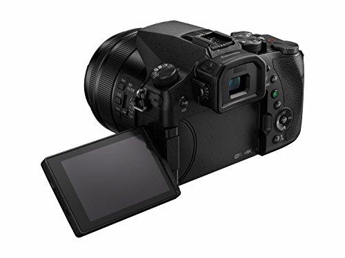 PANASONIC LUMIX FZ2500 4K Point and Shoot Camera, 20X LEICA DC Vario-ELMARIT F2.8-4.5...