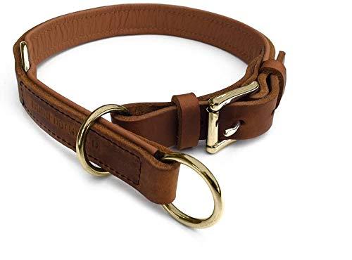 hund-natuerlich Zugstopp Lederhalsband gefüttert für Hunde Hellbraun Cognac Messing, Hundehalsband Leder (55 (Halsumfang 46cm - 50cm))