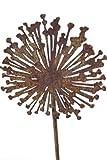 Rostdeko Allium auf Stab Blume Blumenstecker Dekoblume Gartenstecker Gartenstab Garten Deko Dekostab Gartendeko Gartendekoration Rost Edelrost Metall Metallfigur Deko-Idee