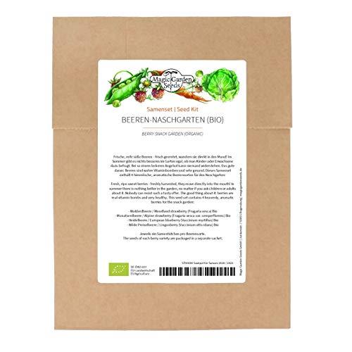 Jardín de refrigerio de bayas (Orgánico) - Set de semillas con 4 celestiales y aromáticas variedades de bayas para cultivar