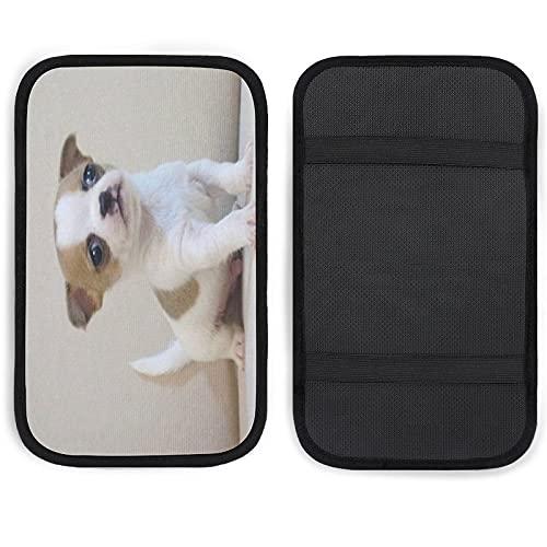 Cubierta de reposabrazos para consola central de coche, personalizada, para mascotas, suave, cómodo, para coche, decoración de cajas, cojín de 36 x 03