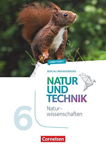 Natur und Technik - Naturwissenschaften: Neubearbeitung - Berlin/Brandenburg - 5./6. Schuljahr: Naturwissenschaften: Arbeitsheft - 6. Schuljahr