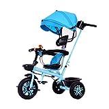 GCXLFJ Triciclo Bebe 1 (Color : Blue)