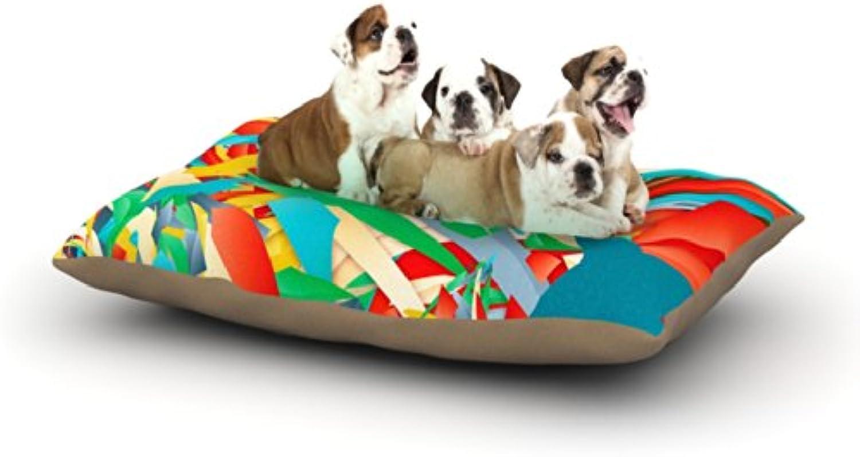 Kess InHouse Danny Ivan Soccer Slide  Crazy Rainbow Dog Bed, 50 by 60Inch