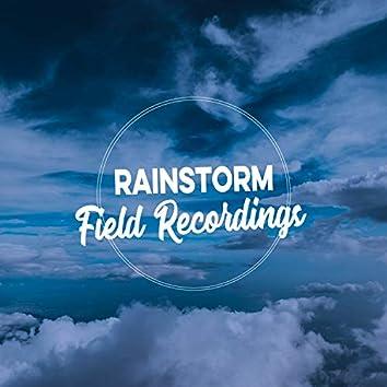 HD Rainstorm & Thunder Field Recordings