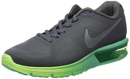 Nike 719916-012, Zapatillas de Trail Running Mujer, Gris (Cool Grey/Metallic Silver Green Glow), 39 EU