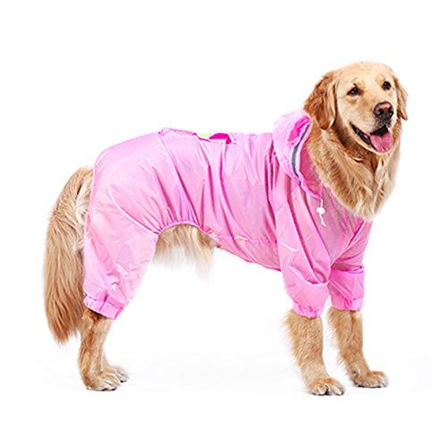 - Samojeden Hund Kostüme