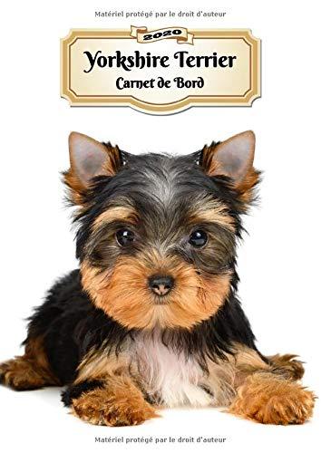 2020 Yorkshire Terrier Carnet de Bord: Chiot ou Chien   139 Pages   12 Mois   Format A4   Agenda   Journalier   Planificateur   Semainier Simple   Calendrier   Organizer