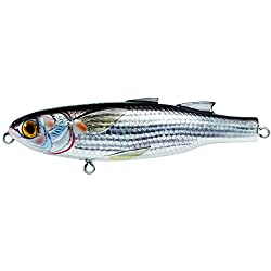 Mullet lure for catching sharks.