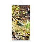 Naturbild'Frosch' Stoffbanner Komplettset - Wandbild, Schaufensterdeko, Praxisdeko, Wanddeko, Werbebanner (60x120 cm)