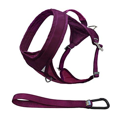 Kurgo go-tech (TM) Everyday Reflektierende Hundegeschirr für Laufen, Wandern & Walking Geschirr, Small, Himbeere