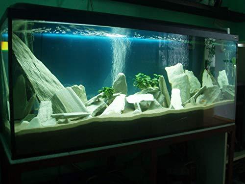 Retne Schiefersteine Dekoration Aquarium Natursteine Schiefer Naturweiß (20kg, Naturweiß)