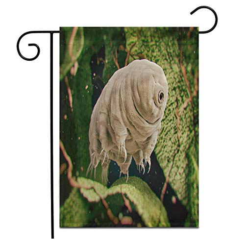 rouihot Home Decor 12'x18' Garden Flag Tardigrada Tardigrade Water Bear 3D Rendered Moss Microscope Biology Outdoor Yard Flags Banner for Patio Lawn Double Sided