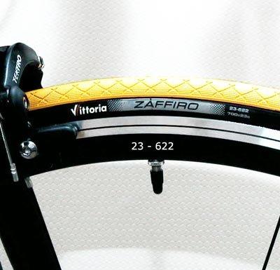 Bicicleta con Campagnolo Xenon y compactt Ret Manivela 51: Amazon.es: Deportes y aire libre