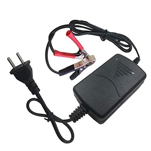 Lecimo 12V1A Coche Motocicleta Pinza de cocodrilo Cargador de batería Inteligente de Doble Cable Cargador de batería de automóvil (especificaciones de EE. UU.)