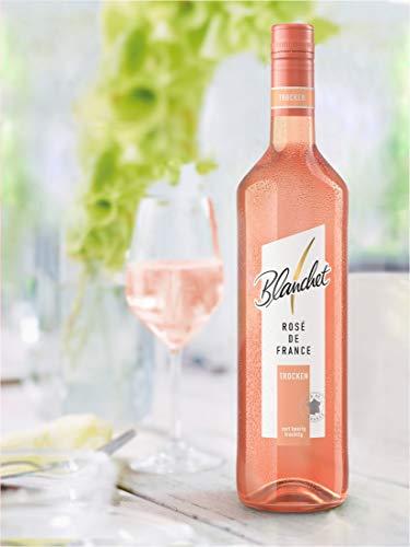 Blanchet Rosé de France Trocken - 4
