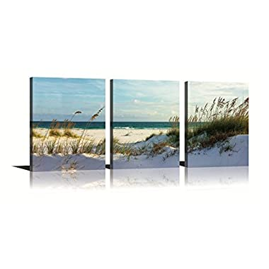 Seascape Wall Art Green Canvas Painting Reed on Beach Sunny day 3 Panels Ready to Hang for Living Room Bedroom 12x16in