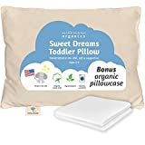 Organic Toddler Pillow & Pillowcase, Made in USA, 13X18, Soft, Hypoallergenic, Safe for Sensitive Skin & Allergies, Sulfate & Cruelty free, Machine Washable. Ideal for travel & daycare