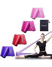 Fitnessbanden, set van 4 elastische banden, gymnastiekband met draagtas, weerstandsband, weerstandsbanden met 4 trainingsbanden voor yoga, pilates, fysiotherapie