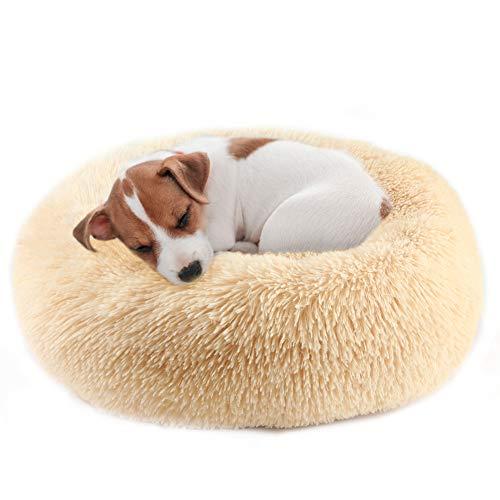 Vanansa Groot hondenbed, wasbaar kattenbed voor middelgrote grote katten honden, comfortabele donut hondenbedden, 3 maten voor zoet warm slapen, champagne 70 cm