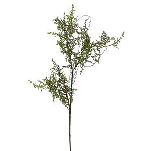 "Silk Flower Arrangements 22"" Baby's Tear Fern Spray Green (pack of 24)"