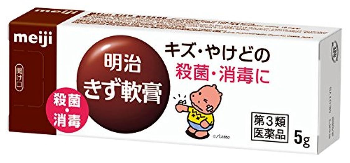 望む表現破壊【第3類医薬品】明治きず軟膏 5g
