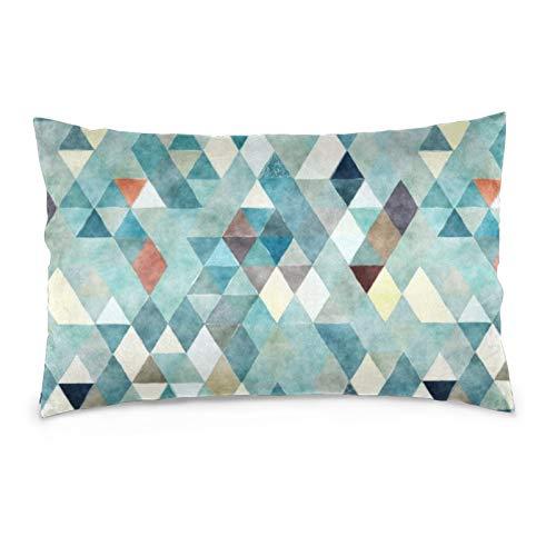 Lesif Fundas de cojín de terciopelo rectangulares fundas de almohada suaves decorativas para sofá, dormitorio, coche, 40,6 x 60,9 cm (patrón abstracto acuarela azulado)