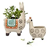 Ceramic Animal Succulent Planter Pots - 6.1 + 4.5 inch Cute Alpaca / Llama & Goat Rough Pottery Unglazed Flower Plant Pots Indoor with Drainage for Herb Cactus Air Plants, Home Decor Gifts