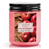 SnailDigit Scented Candle for Home, Cinnamon & Apple Aromatherapy Candle, Soy Wax Candle Gift Set