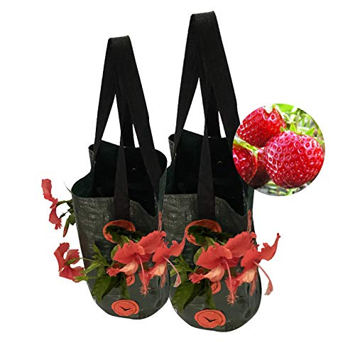 HEWYHAT 2 Pack Strawberry Grow Bag, Garden Planters Bags with 10 Side Planting Pockets, Breathable PE Material Plant Container with Handles for Flowers Tomato 7.8 * 9.8 In (Black)