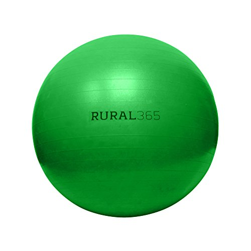 """Rural365   Large Horse Ball Toy in Green, 40"""" Inch Ball Anti-Burst Giant Horse Ball – Horse Soccer Ball, Pump Included"""