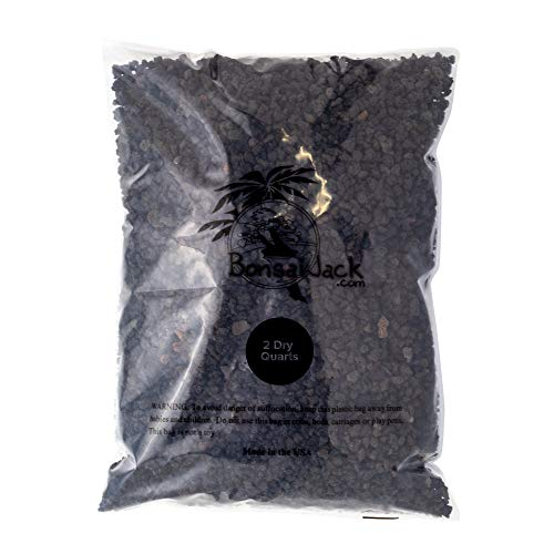 Bonsai Jack - Black 1/4 inch Horticultural Lava Rock Soil Additive for Cacti, Succulents and Plants - No Dyes or Chemicals - 100% Pure Volcanic Rock (2 Dry Quarts)