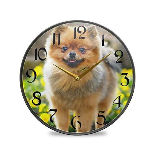 ART VVIES Reloj de Pared Redondo de 12 Pulgadas Que no Hace tictac silencioso Funciona con Pilas Oficina Cocina Dormitorio Decoraciones para el hogar-Perro Spitz alemán Que se Queda en Piedra