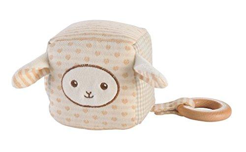 EverEarth 10cm Cube d'éveil mouton avec anneau bois EE33704