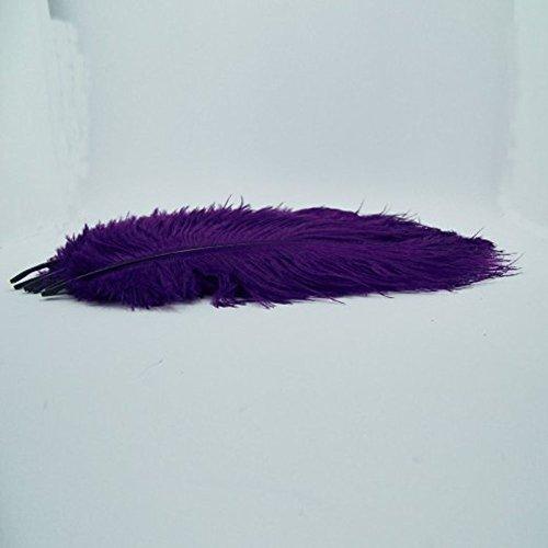Lot de 20 plumes d'autruche violettes - 25 cm - 30 cm - Plumes naturelles pour mariage, fête, maison, décoration de cheveux