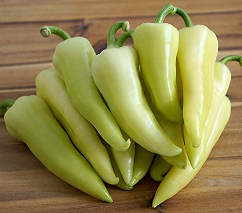 Weiße Spitzpaprika - Paprika - 10 Samen