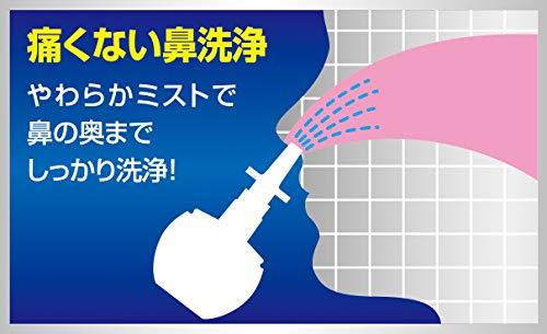 アレルシャット 鼻洗浄 ミストタイプ 70ml