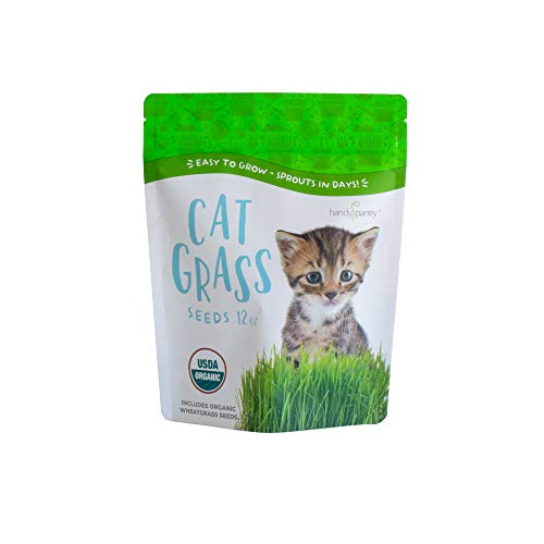 Handy Pantry Certified Organic Wheat Grass Seeds