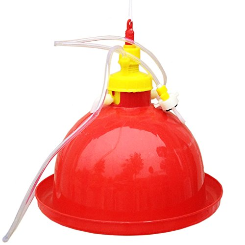 Automatischer Wasserspender für Hühner, Gänse, Ente, Plasson-Typ