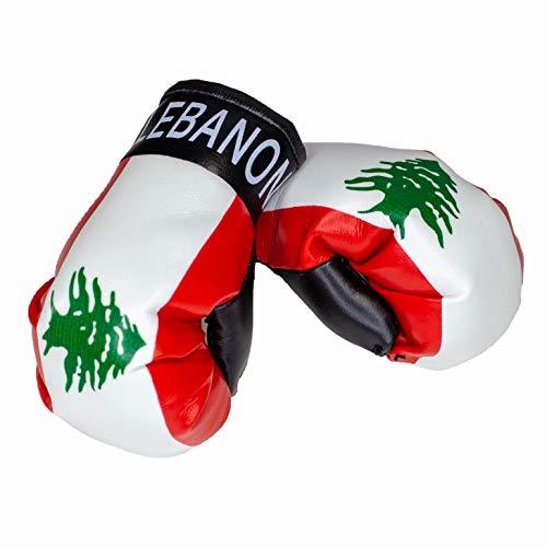 Aimee Mini Boxhandschuhe Lebanon Libanon