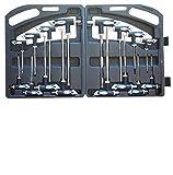 Set di 16 chiavi a brugola e a stella esagonale, qualità professionale, in valigetta di plastica T10-T15-T20-T25-T30-T40-T45-T50 + 2-2,5-3-4-5-6-8-10 mm