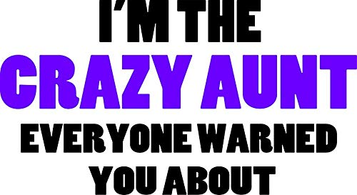 HZ Graphics Crazy Aunt You were Warned About Vinyl Decal Wall Laptop Bumper Sticker 5'
