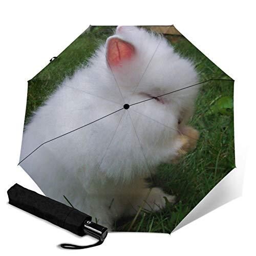 Conejo, paraguas plegable, resistente al viento, protección UV, paraguas compacto para viajes, uso diario