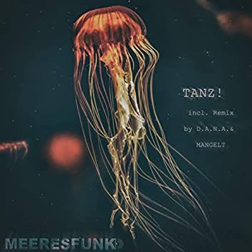 Tanz! (Remixes)
