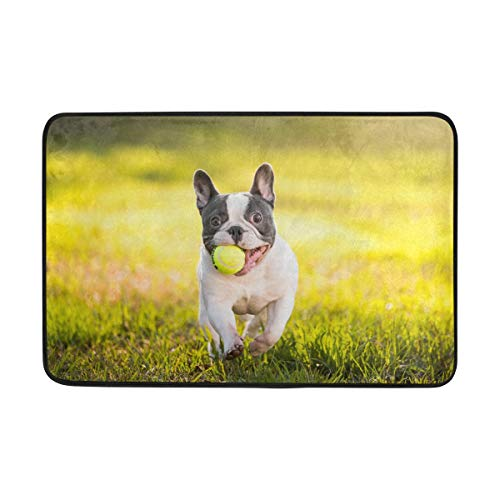 LUPINZ Französische Bulldogge mit Kugel-Muster, Teppich, Fußabtreter, Fußmatte, 59,9 x 39,9 cm, rutschfest, waschbar, verschleißfest