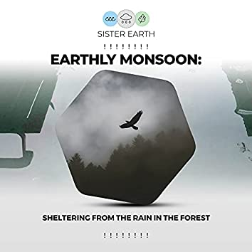 ! ! ! ! ! ! ! ! Earthly Monsoon: Sheltering from the Rain in the Forest ! ! ! ! ! ! ! !