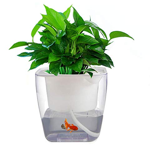 Self Watering Planter Garden, Hydroponics Growing System Flower Pot,...