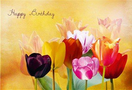Geburtstagskarte Happy Birthday Tulpen im Licht