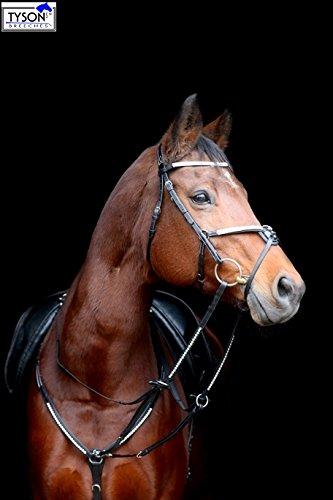 Vorderzeug Martingal Hilfszügel Deister Glitzer Strass Leder VB WB X Full Tysons (Pony)